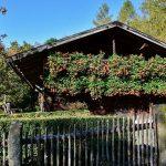 Jardin-décoré-dune-maison.jpg